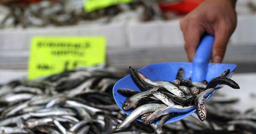 Balık yiyemediğimiz bir sezon yaşıyoruz