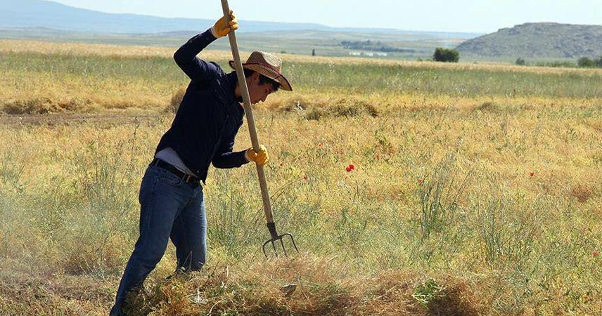 Tarıma dayalı ekonomik yatırımlara hibe desteği geliyor