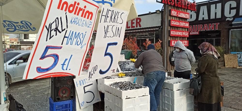 Düzceli balıkçı yaptığı kampanya ile hamsiyi 5 TL'den satışa sundu