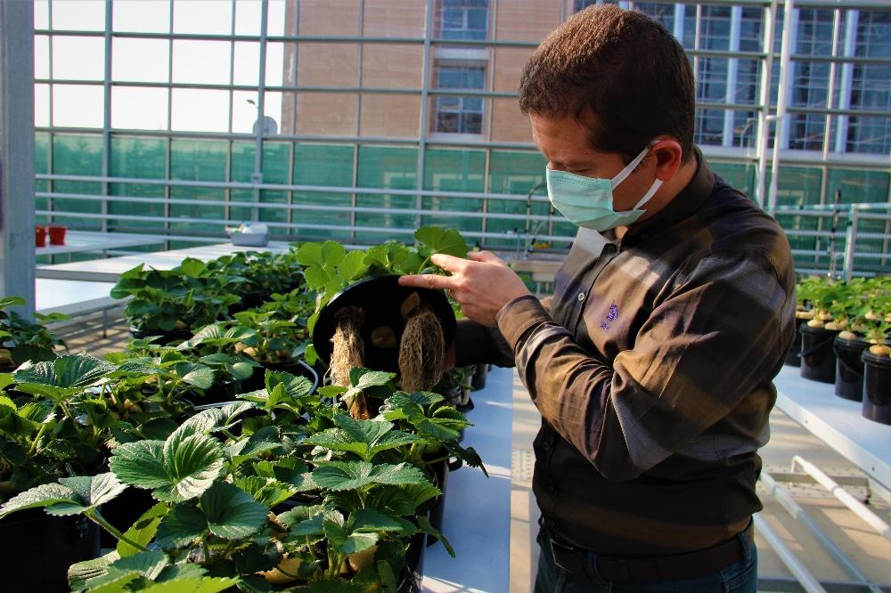 Türkiye bu uygulamalarla tarımda devrime hazırlanıyor