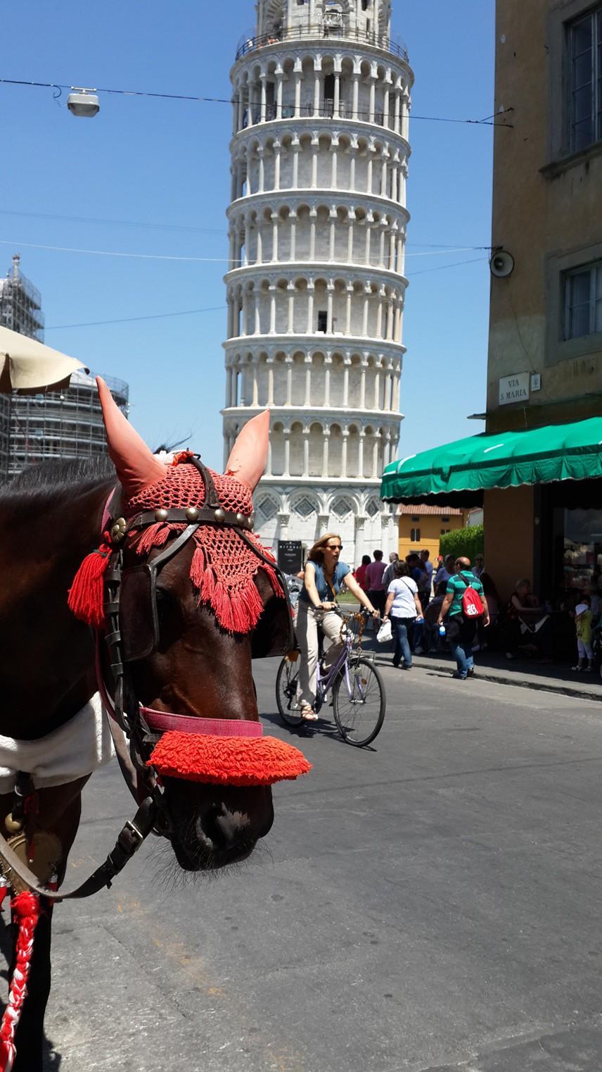 BURASI İNSANI ŞIMARTIYOR Oturduğum kafeden Pisa Kulesi'ne bakarken, dünyanın en çok merak edilen simgelerinden birine karşı afiyetle yemek yemenin şımarıklığını yaşadım.