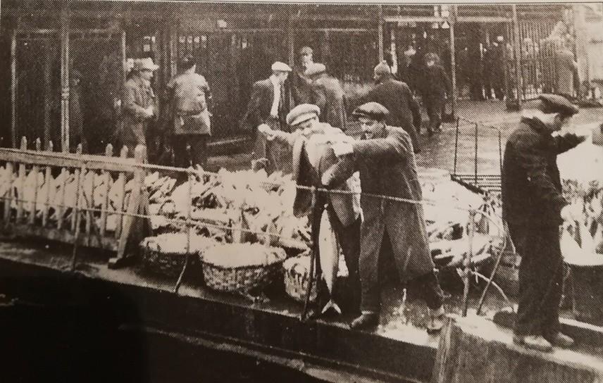 BİN TON TORİK TUTULDU / 1 Ocak 1956 tarihinde İstanbul'da son bir ay içinde yaklaşık 4 bin ton torik tutulduğu bildiriliyor. Balık akını son yıllarda şehir halkının en önemli şikayet konularından biri olan et fiyatlarının artışını, bir müddet için de olsa durdurmuş. Ve halka bol bol balık yeme imkanı sağlamış. Hatta tutulan balıkların bir kısmı yoksul halka bedava olarak dağıtılmış. İskelede balıkçılar torik akınının keyfini çıkartıyor.