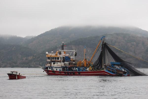 Dünyadaki balık üretiminde 30'lu sıralardayız, Avrupa'da ise 6'ıncı sıradayız.  Türkiye'nin su ürünleri üretiminde dünya klasmanında 228 ülke arasında 33'üncü sırada. Yetiştiricilikte 180 ülke arasında 24'üncü olduğunu kaydediliyor.
