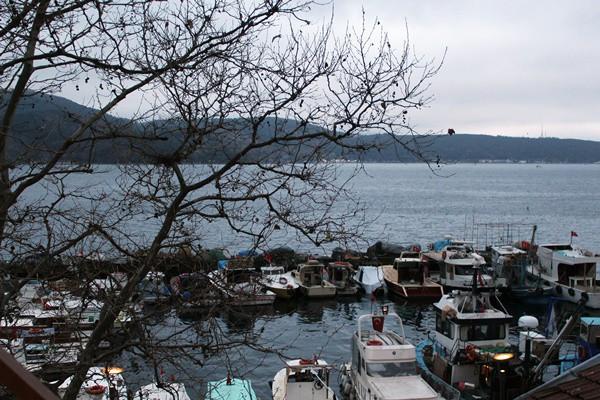 Çok fazla potansiyeli olmasına rağmen, su ürünleri ne yazık ki Türkiye'nin ekonomisinde fazla yer kaplamıyor. Buna karşın 100 bin aile geçimini balıkçılıktan sağlıyor. Yani kırsal nüfusun yüzde 3'ü balıkçılıktan geçiniyor diyebiliriz.