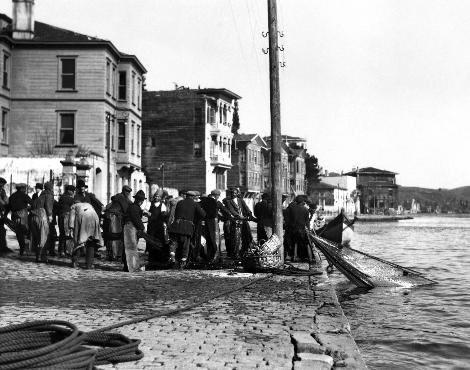 """1909'dan 1923'e kadar olan tablolarda da İstanbul Balıkhanesine bir yıl içinde """"denizden çıkarılıp"""" getirilen balıklar listesinde orkinos adı yazılıydı."""