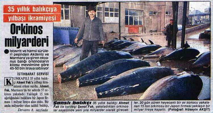 20 GÜN SÜREN AVDA 15 TON ORKİNOS TUTAN BALIKÇI BİR YILBAŞI İKRAMİYESİ KADAR PARA KAZANDI 25 Aralık 1987 tarihli bir habere göre ise Kumkapılı 35 yıllık balıkçı Ahmet Fak, bir seferde tuttuğu 57 orkinostan bir yılbaşı ikramiyesi kadar kazanç sağladı. Yaklaşık 15 ton tutan balıkları bir Japon firmasına 1 milyar liraya satan balıkçı bir anda milyarder oldu.