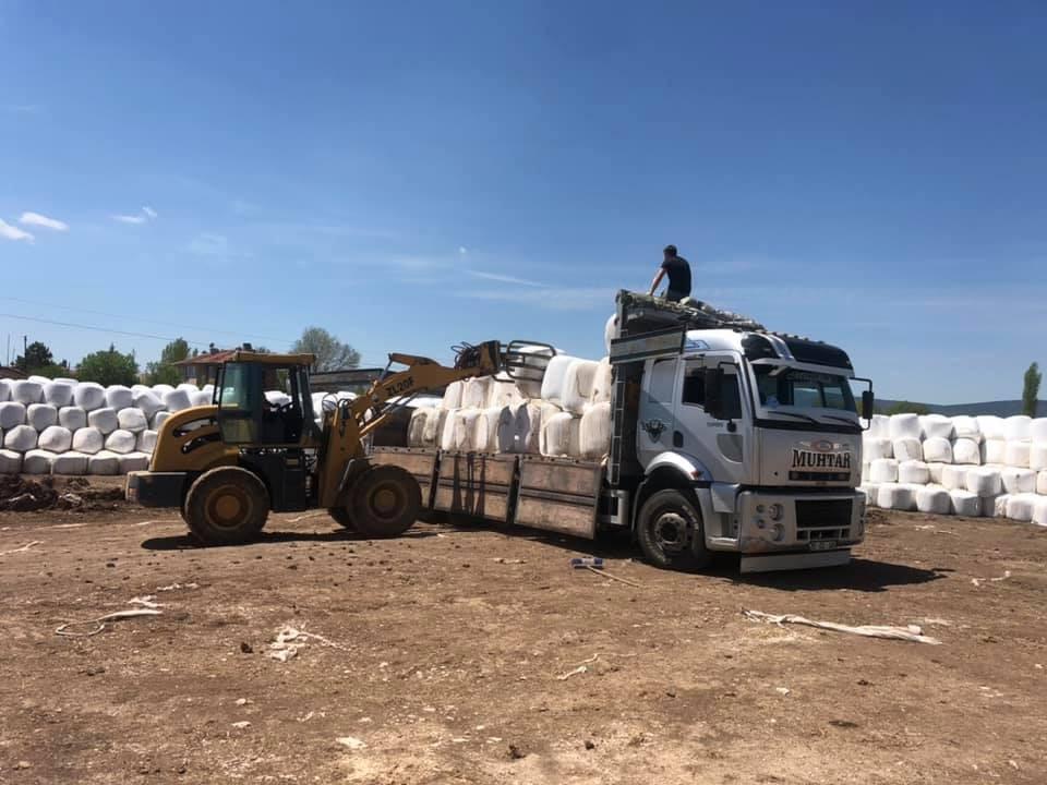 Aslanapa'da 81 ile silajlık mısır satışları yapılmaya başlandı