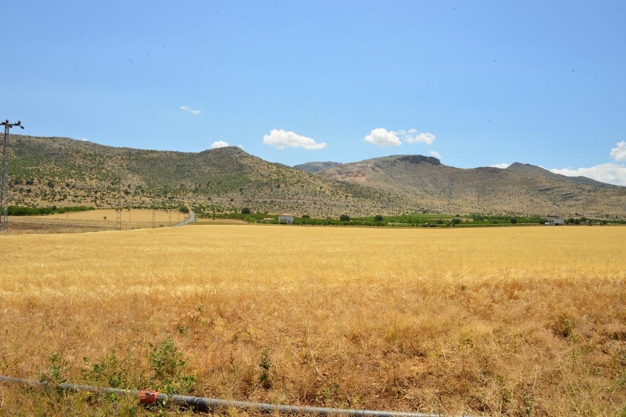 Yeşilyurt Belediyesi'nin tarımsal üretimleri hız kazandı