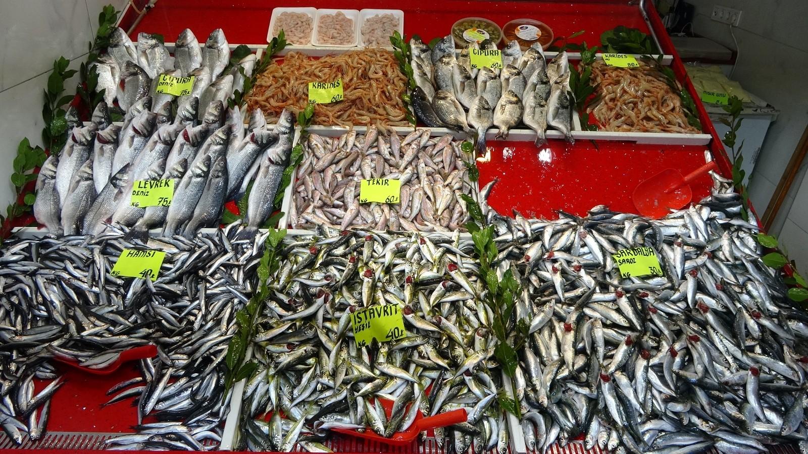 Çanakkale'de sardalyanın fiyatı 30 liraya düştü